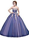 Haine Bal Prințesă Fără Bretele Lungime Podea Tulle Seară Formală Rochie cu Aplică de SG