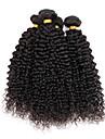 Indiskt hår Curly Weave Sexigt Lockigt Hårförlängning av äkta hår 4 delar Heta Försäljning 4 delar 0.4