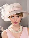 peří fascinátory klobouky hlavy elegantní klasický ženský styl