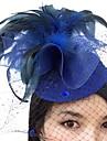 pene fascinații net de pălării cuiburi voaluri stilul elegant