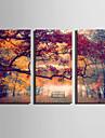 Peisaj Floral/Botanic Modern,Trei Panouri Canava Vertical print Arta Decor de perete For Pagina de decorare