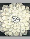Pictat manual Floral/Botanic Artistic Un Panou Canava Hang-pictate pictură în ulei For Pagina de decorare