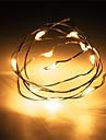 1pcs hkv® 1m 10 condus 2 x aa baterie de cupru sârmă zână șir de lumină de nunta decor de petrecere a condus lumini șir (nu baterii)