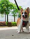 Honden Katten harnassen Ademend Verstelbare Maat Vouwbaar Kleurenblok Gaas Zwart Rood Groen