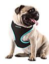 Pisici Câine Hamuri Ajustabile / Retractabil Respirabil Mată Nailon Plasă Portocaliu Trandafiriu Verde Albastru