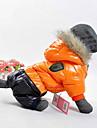 Hund Frakker Hettegensere Hundeklaer Fargeblokk Gul Roed Blaa Bomull Kostume Til Vaar & Vinter Vinter Herre Dame Hold Varm Vindtett Sport