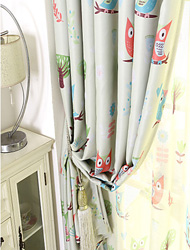 Attractive Blackout Curtains (98)